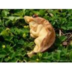figurines bébés enroulés dans feuille avec coccinelle et escargot