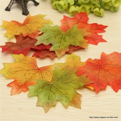 feuilles d'automne en mélange