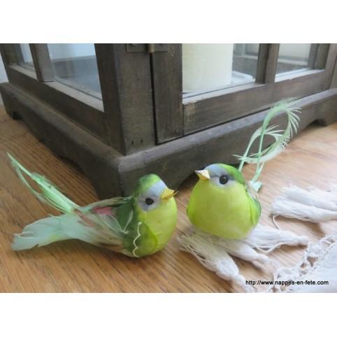 oiseaux vert artificiels à longue queue