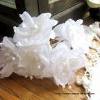 Fleurs blanches pour coiffure de mariée