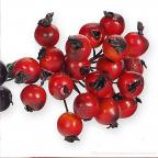 Baies rouges pour votre deco de noël ou d'hiver