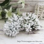 charmantes fleurs miniatures blanches, liens pour tulles ou deco de table