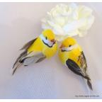 couple de petits oiseaux artificiels jaune pour déco thème oiseaux