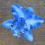 Orchidée clip, fleur pince, à clipser dans cheveux ou en broche