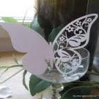 marque place papillon blanc